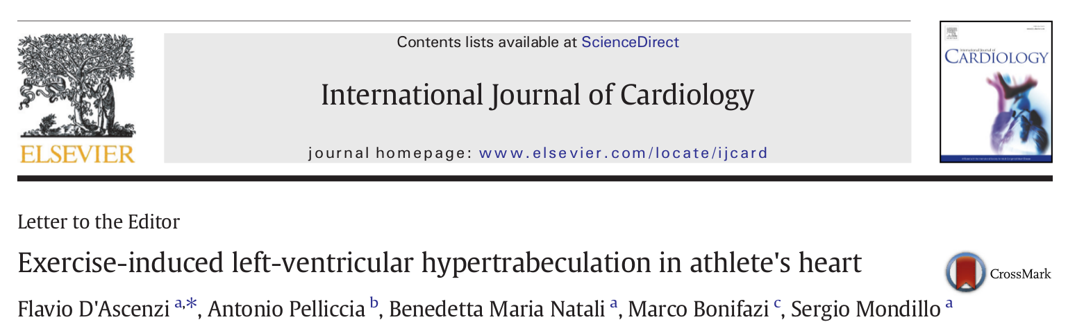 Exercise induces left ventricular hypertrabeculation in athlete's heart