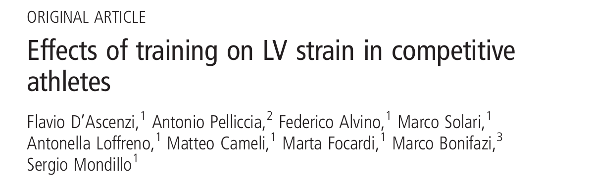 Effects of training on LV strain in competitive athletes